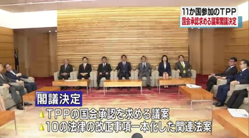 TPP11a_閣議決定.png