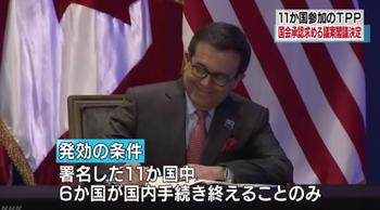 TPP11c_発効条件.png