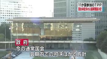 TPP11d_会期日程.png